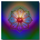 Lotus Art Awakening Moment